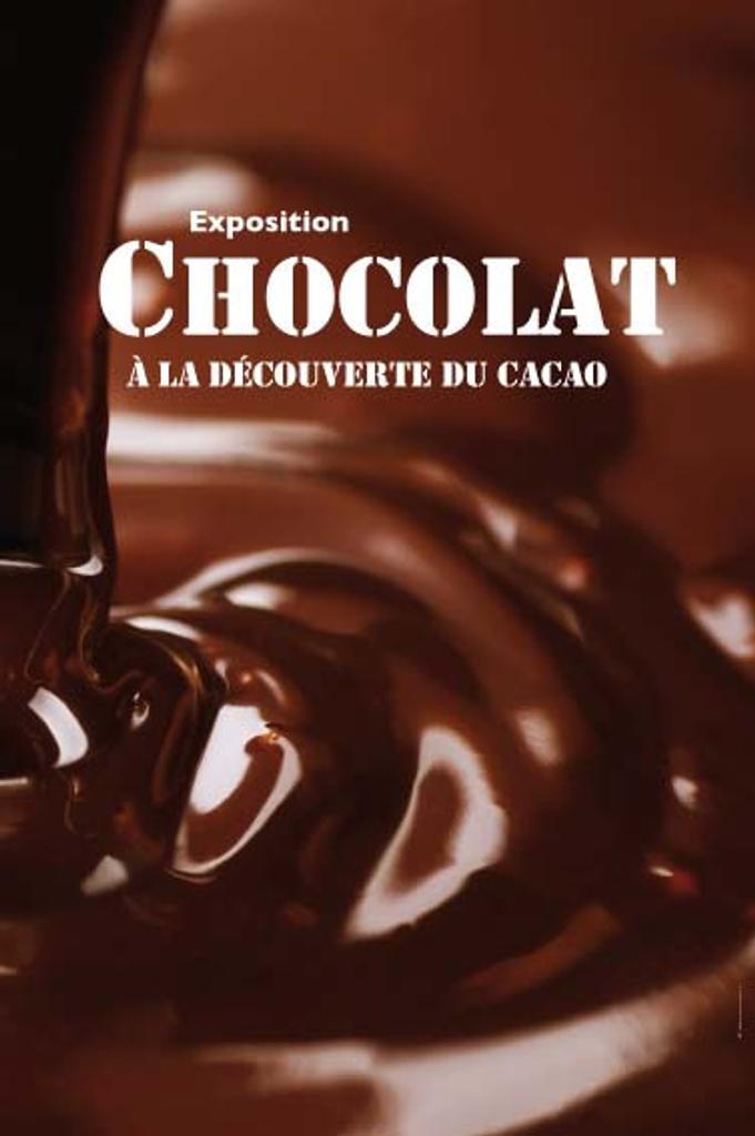 Chocolat : A la découverte du cacao |