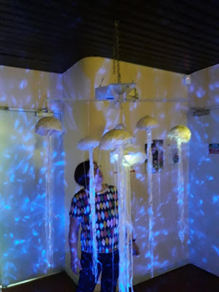 Mondes oniriques : Le cercle des méduses et la galerie des merveilles |