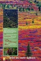 Biodiversité / Exposition réalisée par Comvv  